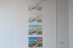 _VRC0352.jpg (CAP VRC - University of Colorado-Denver) Tags: collegeofarchitectureandplanning finalproject landscapearchitecture spring2019