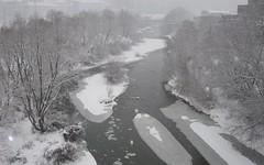 grey shades in winter (afafa02) Tags: