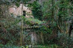 La turbina de Colom (SantiMB.Photos) Tags: winter españa geotagged ruins girona ruinas invierno garrotxa santjoanlesfonts cataluna 2blog 2ig 2tumblr geo:lat=4221603100 geo:lon=250424100