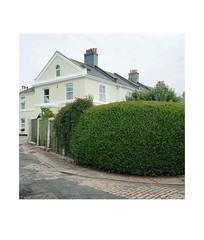 privet (chrisinplymouth) Tags: house corner hedge privet gardenhedge stoke plymouth devon england uk cw69x city xg desx diagx diagonal urbio trait