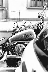 Harley-Davidson (Konakilo) Tags: pentaxmesuper smcpentaxm 50mm fomapan kodak d76 harleydavidson moto motorbike