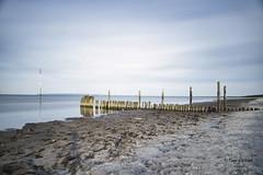 Ostsee im Abendlicht (*Tageslicht*) Tags: langzeitaufnahme amstrand abenddämmerung alteholzpflöcke