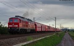 233 285 Roßla 12.06.2019 (Falk Hoffmann) Tags: diesellok eisenbahn bahnhof güterzug dbcargo dbschenker ludmilla br132 br232 br233