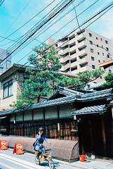 layers. (barbs--) Tags: machiya kyoto japanesearchitecture kyōmachiya layers geometry commuting bikinginkyoto leicam6 kodakektar100 analog analoglove ishootfilm contrast cityofconstrast juxtaposition