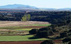 Valle del río Cañamares. Carrizosa