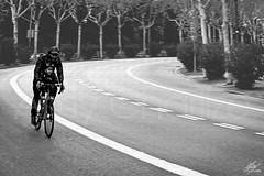 Juntos (Amy Charlize) Tags: amycharlize focosocial blackandwhite bike together juntos city street streetlife urban