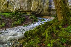 Source Bruyant mountain stream-2228 (George Vittman) Tags: stream mountains alps vercors france wild water moss naturephotography jav61photography jav61
