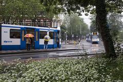 Een regendag in juni (Tim Boric) Tags: amsterdam alexanderplein regen rain stad city tram tramway streetcar strasenbahn gvb