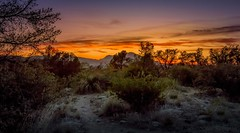 "In Search of ""the Dream"" (JDS Fine Art Photography) Tags: lakewatson arizona prescottvalley desert landscape nature sunset inspiration mountaintop beauty naturesbeauty thejourney travel"