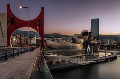 Bilbao 2017 - Revisited (auredeso) Tags: bilbao spagna espana spain guggenheim ponte bridge revisited hdr nikon tokina nikond7100 tokina1116 tonemapping