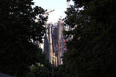 La Sagrada Familia (Fnikos) Tags: city sky cielo gaudí antonigaudí lasagradafamilia construction building architecture modernism art sculpture temple faith basílica religion tree nature outdoor