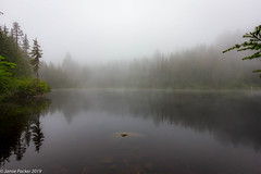 Lost Lake.jpg (jamiepacker99) Tags: canon1022mmlens trees summer bc landscape lostlake canont2i woods mist lakewater forest canada westvancouver 2019 brothersloop june