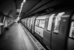 (maxwalshphotography) Tags: 35mm film photography blackandwhite monochrome canonetql17 kodak trix england tube underground homedevolped cinestilldf96 london