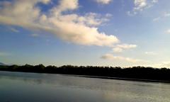 Viaje de retorno, humedal nacional Térraba-Sierpe / Return trip, Térraba-Sierpe national wetland (vantcj1) Tags: río cauce agua humedal vegetación bosque manglar naturaleza cielo nubes llanura reflejo colinas montañas bote navegación