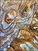 Swirls (katepedley) Tags: trachyte volcanic volcano felsic intermediate alkali alkaline basic rock geology igneous dike intrusive weathering swirls akaroa onawe bankspeninsula banks peninsula canterbury canterburynz southisland south island newzealand new zealand iphone pattern abstract