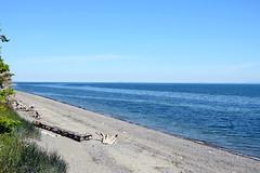 Port Williams Beach, Marlyn Nelson County Park 623 (Donna's View) Tags: nikon d3300 portwilliams portwilliamsbeach marlynnelsoncountypark countypark park beach mountain mtbaker straitofjuandefuca strait protectionisland island driftwood
