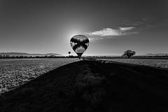 Hot Air Balloon Ride - Albuquerque, New Mexico (BeerAndLoathing) Tags: aerialphotography usa rp newmexicotrip blackwhite canon newmexico albuquerque rainbowryders roadtrip trips aerial balloonride hotairballoon canonef1740mmf4lusm canoneosrp spring bw 2019 nm april blackandwhite