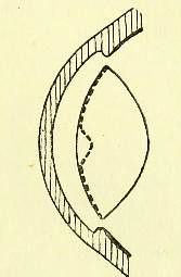 This image is taken from Page 13 of Further investigations on accommodation : the so-called Sanson-Purkinje reflex image of the anterior lens surface, being papers read in the Section of Physiology at the Annual General Meeting of the British Medical Asso