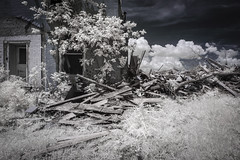 Fox House Infrared (Notley Hawkins) Tags: httpwwwnotleyhawkinscom notleyhawkinsphotography notley notleyhawkins 10thavenue missouri 2019 foliage tree landscape outdoors ir infrared architecture rural abandoned missouriphotography trees sky lifepixel june callawaycountymissouri home house wood timbers