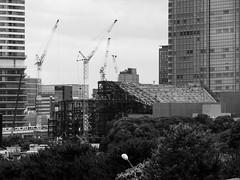 190611_038_P1290109 (oda.shinsuke) Tags: 築地大橋 crane underconstruction