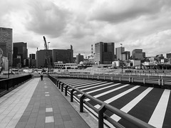 190611_022_P1290083 (oda.shinsuke) Tags: 築地市場 tsukijimarket demolition 築地大橋