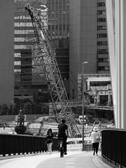 190611_018_P1290078 (oda.shinsuke) Tags: crane 築地市場 tsukijimarket demolition 築地大橋
