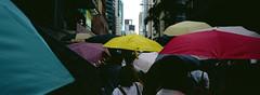 Umbrella movement Hong Kong 2019 (stevenwonggggg) Tags: xpan hasselblad film 100 hongkong urban analog kodak ektachrome e100