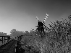 Wicken Fen (davepickettphotographer) Tags: nationaltrust cambridgeshire wicken wickfen uk fenland naturereserve nature naturalhistory spring earlymorning trust windpump reeds reedbed