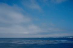 Monterey Bay (bingley0522) Tags: contaxiia carlzeissbiogon35mmf28 kodakcolorplus200 pacificocean pacificgrove montereybay blue fogburningoff autaut california coastalcalifornia