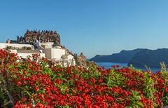 Oia, Santorini. (athanasakisgia) Tags: santorini oia