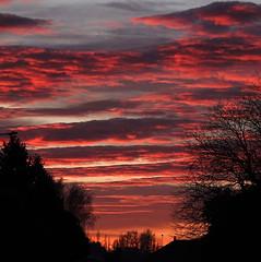 Fiery shades.... (flying-leap) Tags: newzealand sunrise nature cloudsstormssunsetssunrises clouds sky winter dawn sonydscrx10m4 sonydscrx10iv sonyrx10iv fiery layers