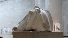 British Museum (carolyngifford) Tags: britishmuseum london sculpture parthenonmarbles elginmarbles horse