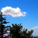 Cielo blu - Sky blue