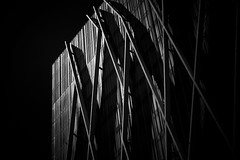 (elgunto) Tags: museublau forum port barcelona light architecture building highcontrast dramatic perspective blackwhite bw monochrome sonya7 olympus100mmf28