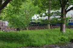 IMGP0555 (Steve Guess) Tags: dalegarth re steam railway narrow gauge 15inch train cumbria england gb uk ravenglass eskdale riverirt engine loco locomotive laal ratty