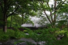 IMGP0552 (Steve Guess) Tags: dalegarth re steam railway narrow gauge 15inch train cumbria england gb uk ravenglass eskdale riverirt engine loco locomotive bridge river laal ratty