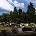 Cemetery Gentbrugge Ghent Flanders