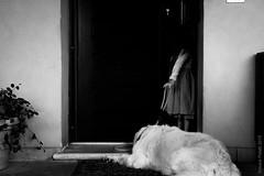 intruder and guardian (simone.pelatti) Tags: child dog black white blackandwhite bw contrast door mystery curiosity discover entrance enter wait trust intodarkness bambina cane bianco e nero porta mistero curiosità scoperta entrata entrare attesa fiducia