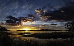 Sunrise - Woodbridge (phil hirst) Tags: tasmania australia pentaxk1 samyang24mmf14 dentrecasteauxchannel pentaxart