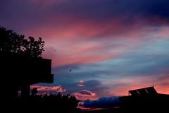 Alba - Palermo (dona(bluesea)) Tags: alba sunrise cielo sky nuvole clouds palermo sicily sicilia
