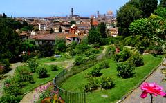 Florence, Flowers (Giulia C) Tags: florence firenze duomo giardinodellerose roses rosesgarden toscana tuscany italia italy view landscape