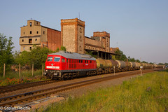 234 242 (Stefan´s Bahnbilder) Tags: salzlandrail srs 234 könnern mohn himmel malzfabrik gras russe kessel sachsen anhalt sonne abendlicht bäume