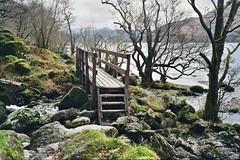West Highland Way, April 2018 (edwardsholly) Tags: westhighlandway lochlomond scotland film 35mm olympustrip highlands olympustrip35 olympus
