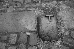 Ttime (Tony Tooth) Tags: nikon d600 tamron 2470mm cobbles bw blackandwhite monochrome leek staffs staffordshire stilllife