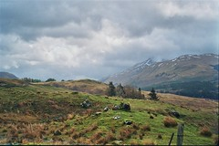 West Highland Way, April 2018 (edwardsholly) Tags: westhighlandway scotland film 35mm olympustrip35 highlands olympus olympustrip