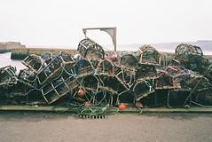 St Andrews, February 2017 (edwardsholly) Tags: scotland 35mm olympustrip35 olympustrip olympus analogue