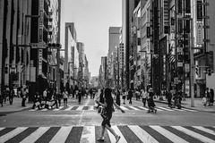 picture 0076 (Logicpierrot_) Tags: filmphotography landscape streetphotography cityscape blackandwhite snapshot monochrome urban 35mm noiretblanc tokyo portrait streetportrait streetmobs