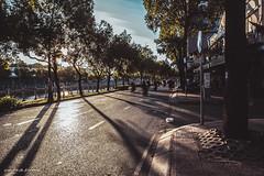 _MG_3399 (vuphone0977) Tags: cafe2fone canon canoneos6d landscape phongcanh vietnam việtnam sunrise saigon streetlife sàigòn 24105 6d eos kênhnhiêulộc kenhnhieuloc mylife