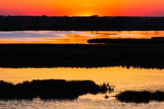 Intervals (John Westrock) Tags: nature landscape sunset marsh water sky wisconsin canoneos5dmarkiii canonef100400mmf4556lisusm johnwestrock