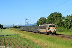Survivor (Lion de Belfort) Tags: train chemin de fer champ blé alsace kogenheim ebersheim sncf ter danseuse rrr bb 25500 25664 228 ligne 3 l3 ebersmunster